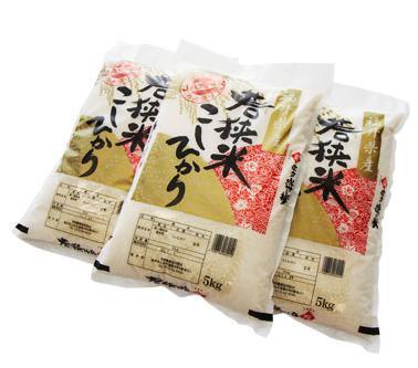 若狭米こしひかり15kg